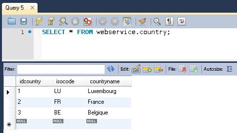 art7_img5_talend_esb_webservice_pour_nuls