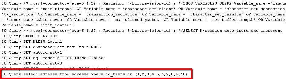 Résultat du log des requêtes en base de données